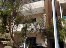 Apartment for sale in Aqaba city Al Sakaneyeh (3)
