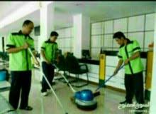 شركه الدهان للتنظيف الشامل ومكافحة الحشرات 65769291