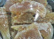 لبيع العسل البلدي