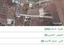 قطعة زراعي  للبيع  /حوض المضري  اراضي السلط