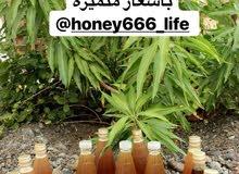 عسل (السدر )الطبيعي  وعسل (البرم )النحل العماني الطبيعي