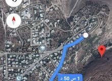 للبيع ارض باربد منطقه ابدر 3 دنمات  ونصف 15 الف الدنم