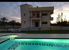 Best property you can find! villa house for rent in Western Zawiya neighborhood