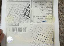 حي عاصم شمال / موقع جميل جدا  جاهز للبناء وبقرب منازل ومدرسه حكوميه قائمه