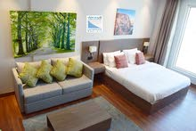 Luxury Fully Furnished Spacious Studio & 1 Bedroom Apartment