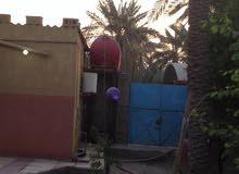 بستان ملك طابو صرف في أبو الخصيب