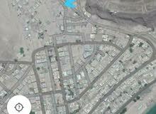 ارضية رووعة تطل على منطقة كود النمر على ساحل كود النمر