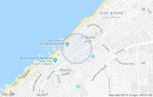 لكبار التوكيلات التجارية مساحة 450 م سان ستيفانو للبيع أو للإيجار