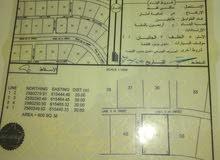 ارض للبيع من المالك مباشره ف لزغ 10 مقابل مصنع الذخاير رقم القطعه 49