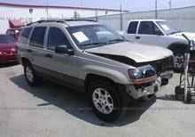 رابش الامريكي  jeep