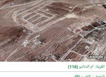 للبيع ارض 600 م في ام الدنانير شمال عمان