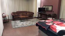 قصر للايجار باليوم مفروش 6500بالشيخ زايد شباب