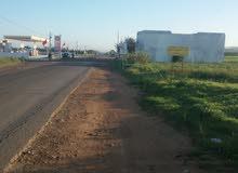 طريق الوالدية كلم 54 مركز اولاد غانم إقليم الجديدة
