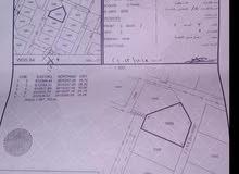 معروض للبيع ارض سكنية للبيع في المعبيلة الجنوبية المرحلة الاولي
