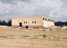 للبيع ارض زراعية 36 فدان (محاصيل )  بموقع متميز جدا  القاهرة- اسكندرية الصحراوي