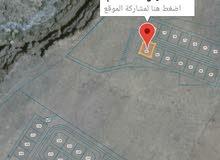 ارض للبيع في ولاية الحمراء حيل الشص