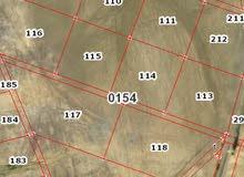 ارض مميزه  في ابو الحصاني