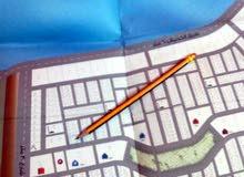 ارض مخطط الموسى او المحمدية جنوب جامعة جازان