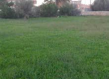 السواني الشرقيه بالقرب من كوبري السواني موبايل 0917589079