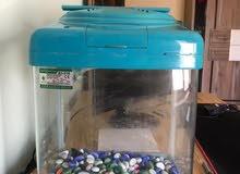 حوض سمك مع كامل ملحقات