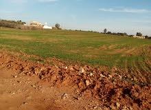 أرض للبيع أربعة هكتارات