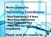 مطلوب فورا منسق تسويق - Marketing Coordinator