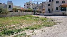 ارض 500 م - عين الباشا حوض ربوع العدس