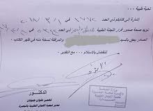 رقم معوقين بصرة  جاهز مع صحة صدور  سعر 22$ ورقة