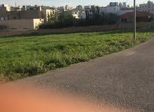 للبيع قطعة ارض في شفا بدران حوض مرج الفرس