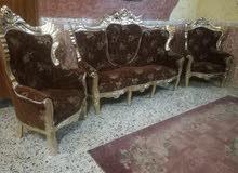 تخم مصري عشر مقاعد