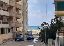 شقة للاقامة بجوار الشارع الرئيسي وكنتاكي في شاطئ النخيل العجمي