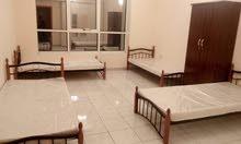 غرف وسرارير فندقية للإيجار