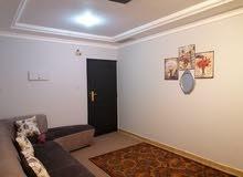 شقة غرفة وصالة للإيجار بحولي