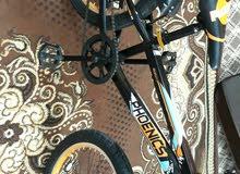 دراجة1