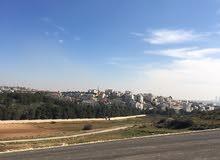 ارض للبيع في دابوق مساحه2000 متر مربع بسعر مغري