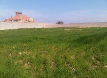 لعشاق التميز....قطعة أرض 6700 متر عقد أزرق...5 دقائق من العروبه و المطار