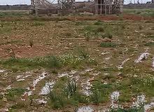 ارض فى منطقة اللويفية مقابل شيل الجبو 1250م سكنية وزراعية يوجد به كهرباء ومخطط سكنى واستراحات