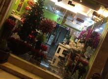 محل زهور للبيع او الضمان