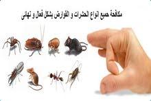 شركة مكافحة الحشرات بأفضل انواع مبيدات الصحة العامة البصر اصير