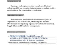 seeking job as a sales executive