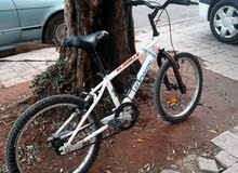 دراجة هوائية عدد 2