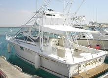 Sea Ray 310 AJ