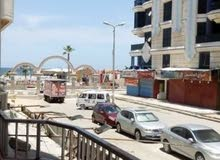 شقه للايجار الشهري بشاطئ النخيل الاسكندريه بالشارع الرئيسي 27 ثالث عماره من البح