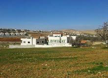 ارض للبيع في ابو نصير , مساحة الارض 585م