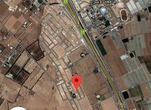 ارض 500م مقابل جامعة الاسراء الطنيب السكة الغربي بسعر مميز