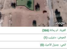 ارض سكنيه في ام رمانه شفا بدران
