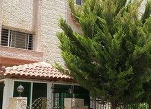 مرج الحمام خلف إسواق السلطان