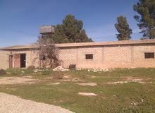 هنكر للايجار بخلة بالعون بالقرب من مسجد فاطمة الزهراء