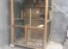 قفص خشب كبير اللا بيع او مروس