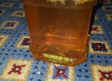 عسل طبیعی ، من ایران، لو تعرفون عسل اصلی شوفوا